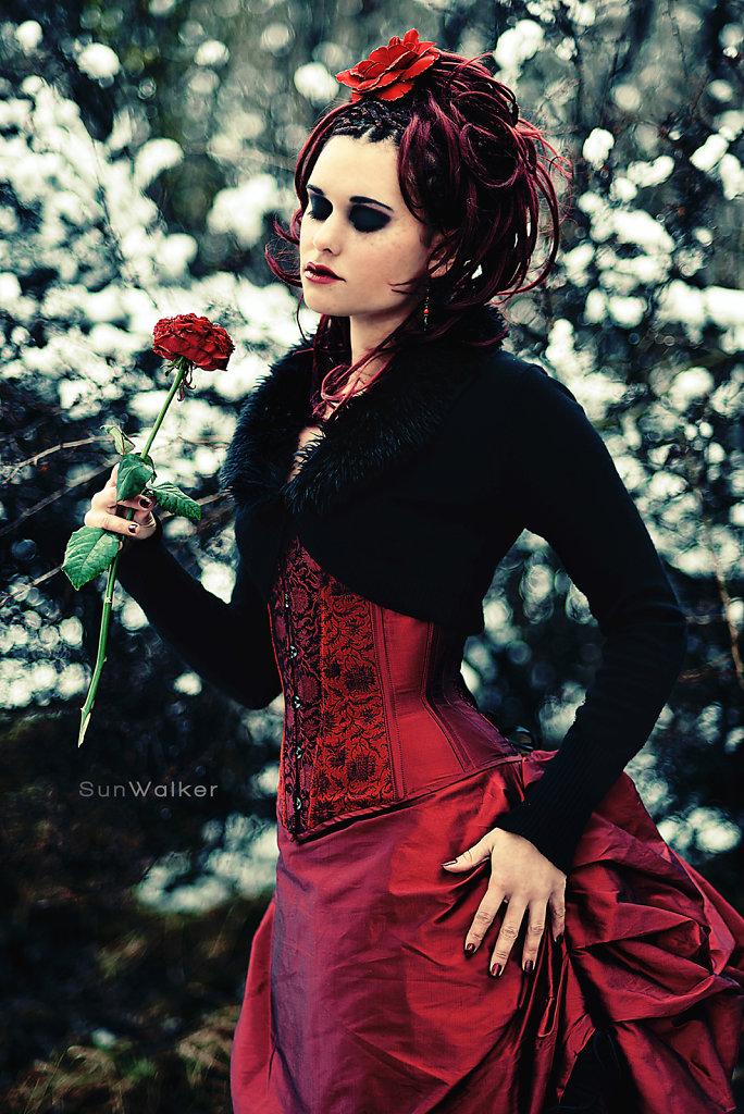 La rose dentelle